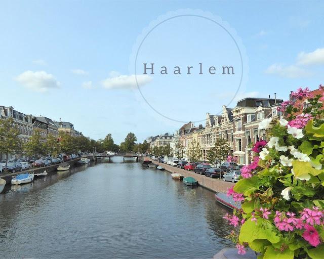 Haarlem: cosa vedere in un giorno