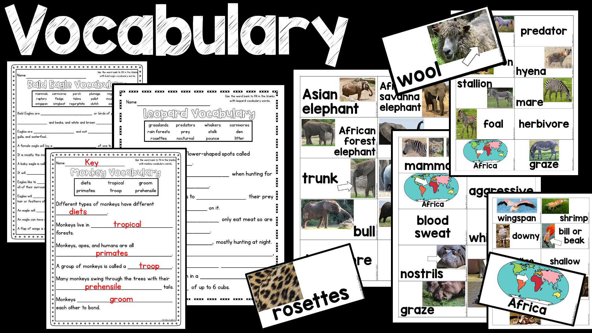 Headfirst - a blog for primary teachers by a first grade teacher: October  2020 [ 1080 x 1920 Pixel ]