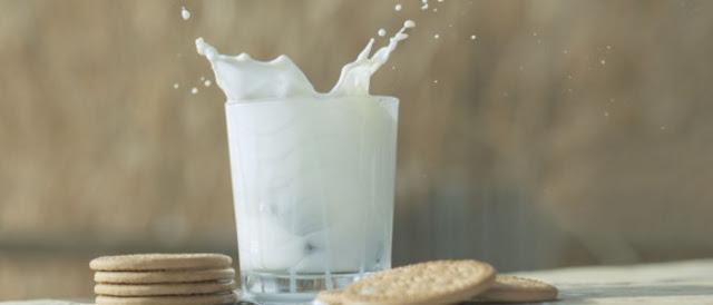 lactose free chocolate milk mix