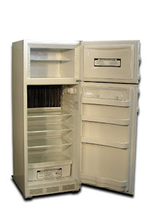 Save on electricity by switching your spare refrigerator to a gas refrigerator from Gas Fridge