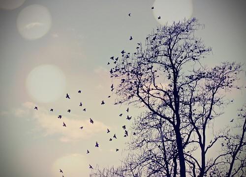 Garota Do Blog: As Coisas Boas Vem Com O Tempo. As