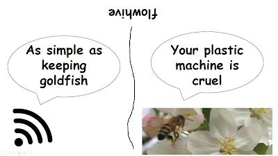 bee, beekeeping, darwinian beekeeping, flow hive,
