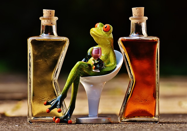 The importance of positioning for your brand a frog figure with a glass of wine sitting between an oil and a balsamico bottle