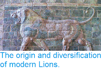 http://sciencythoughts.blogspot.co.uk/2014/04/the-origin-and-diversification-of.html