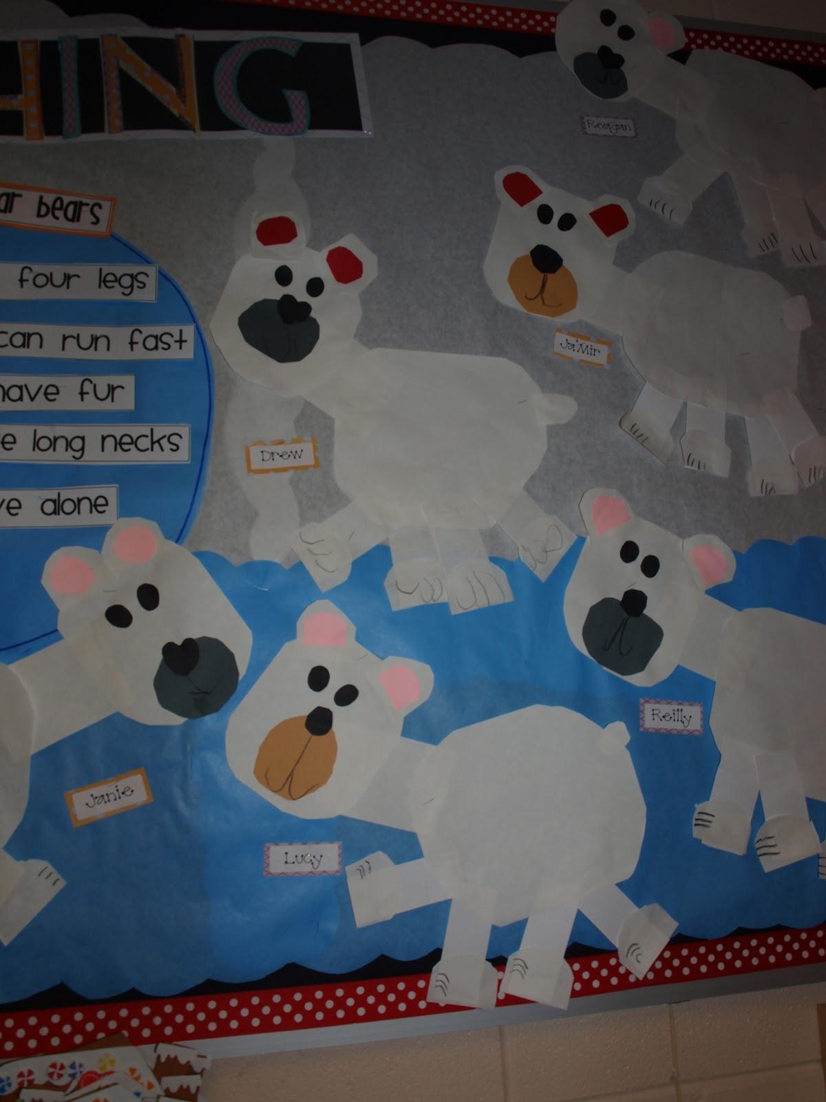 Arctic Animals Fun