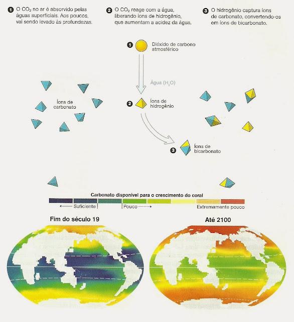 CO2 ao longo dos anos