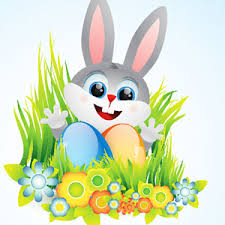 funny easter bunny images
