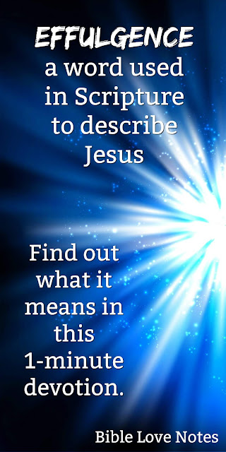 """If you don't know what it means to say Christ is """"the effulgence of God's splendor"""" then you need to read this 1-minute devotion and be en-light-ened. (pun intended) #BibleLoveNotes #Bible"""
