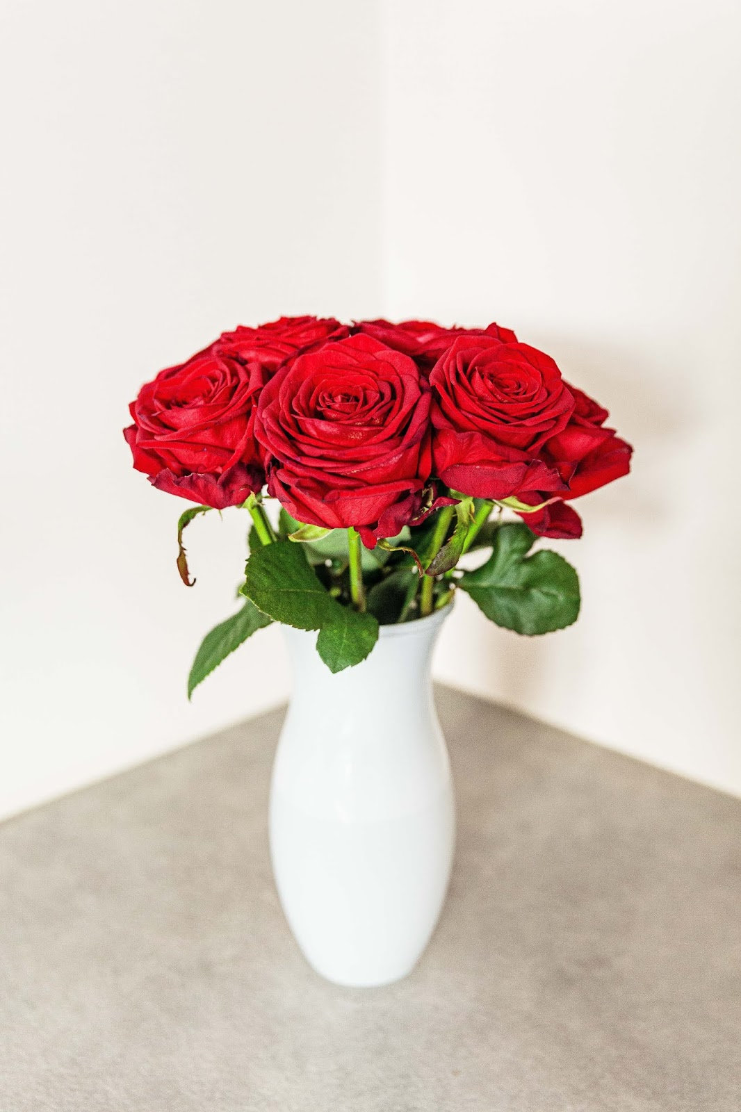 red rose flowers in white vase, rose images