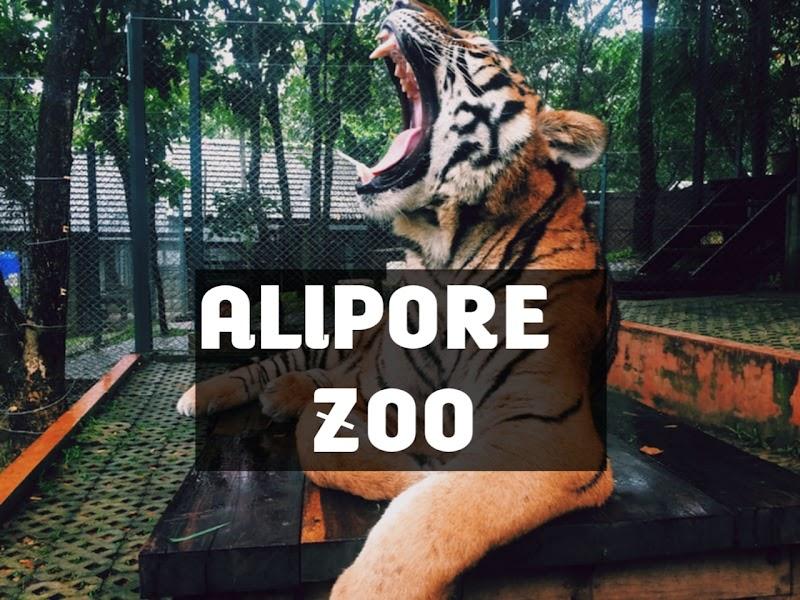 Alipore Zoo, Time, kolkata Alipore zoo, Ticket