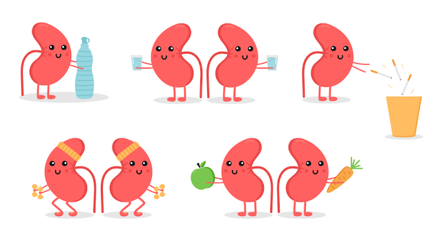 7 ways to keep your kidneys healthy