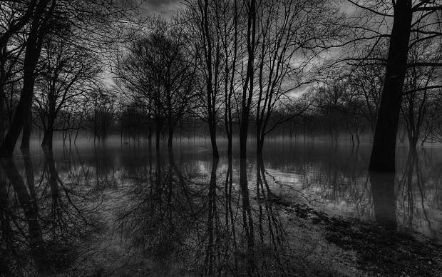 Scenic Landscape Black and White