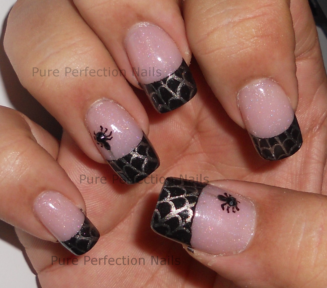 Pure Perfection Nails: Spider Web French Stamping Nail Art