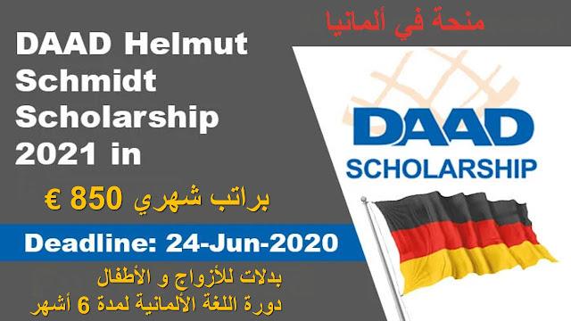 منحة DAAD Helmut Schmidt 2021