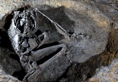 Pre-Roman decapitated skeleton unearthed in UK
