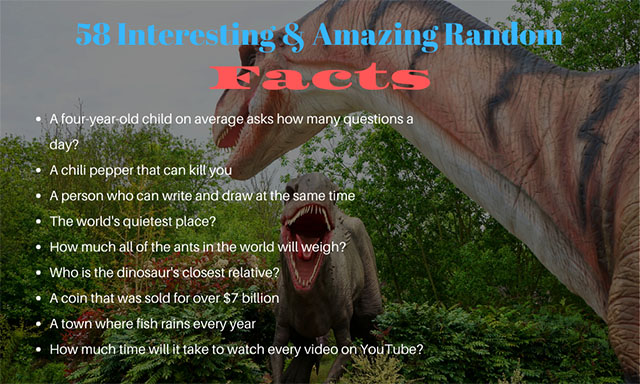 Top 58 Random Facts You Would Love To Read
