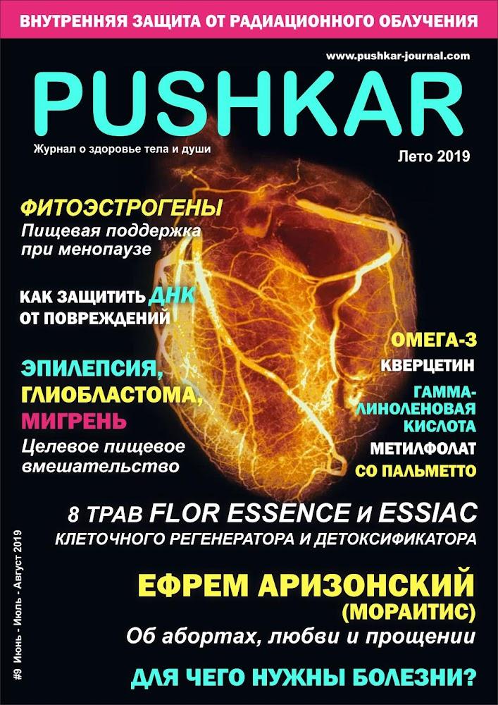 ЖУРНАЛ PUSHKAR #9 ЛЕТО 2019