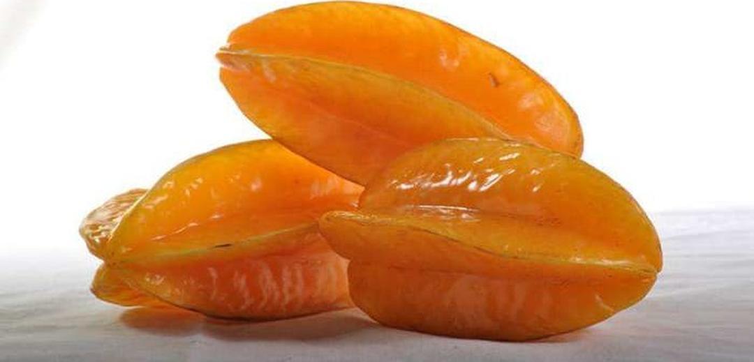 Bisa Partai Besar! benih buah belimbing bangkok orange 12 seed Kota Kediri #bibit buah