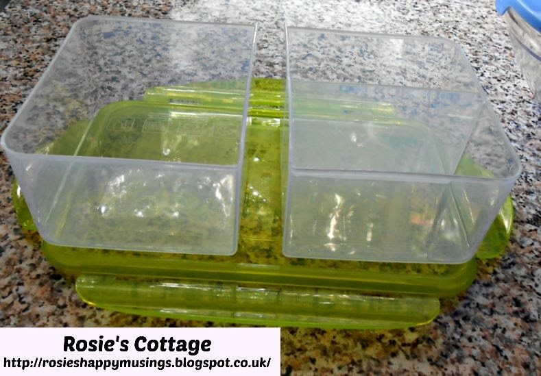 Arctic Zone Locking Lid Container - compartments