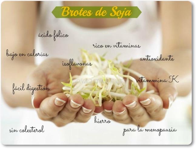 5 propiedades de los BROTES DE SOJA + Recetas
