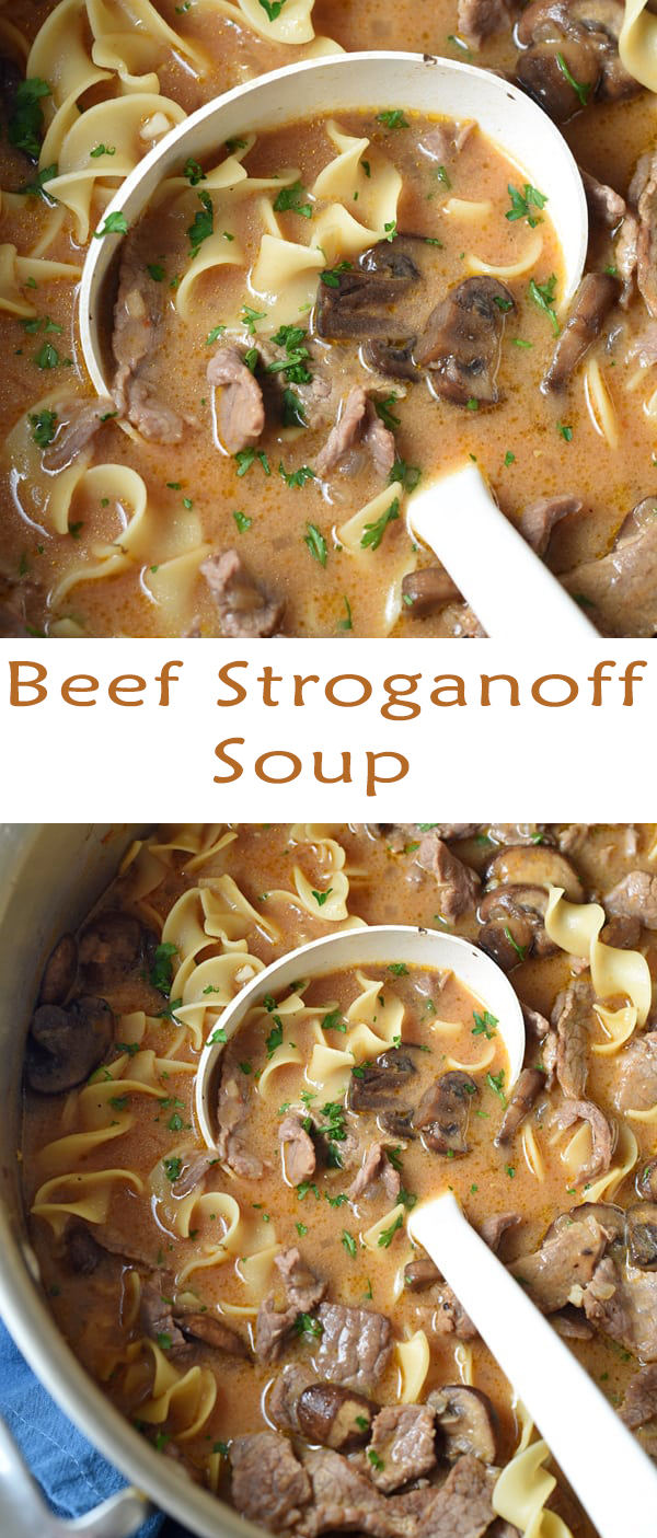 ONE POT BEEF STROGANOFF SOUP RECIPE