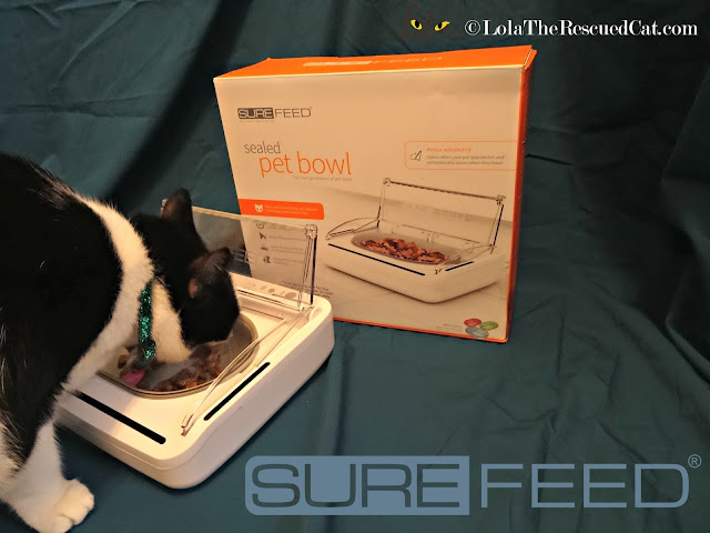 surefeed sealed pet bowl |sureflap.com