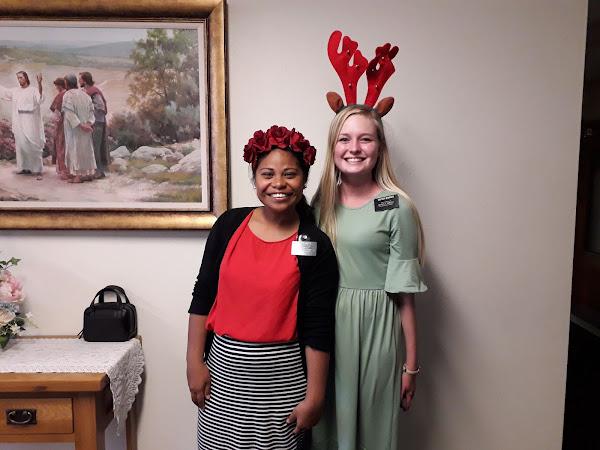 Week 16:   Pavlova & Puhtacawa + Rest home Nativity + Christmas-ness
