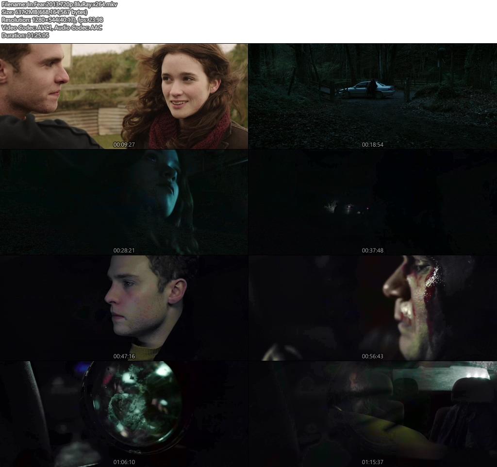 In Fear 2013 720p BluRay x264 | 480p 300MB 100MB HEVC Screenshot