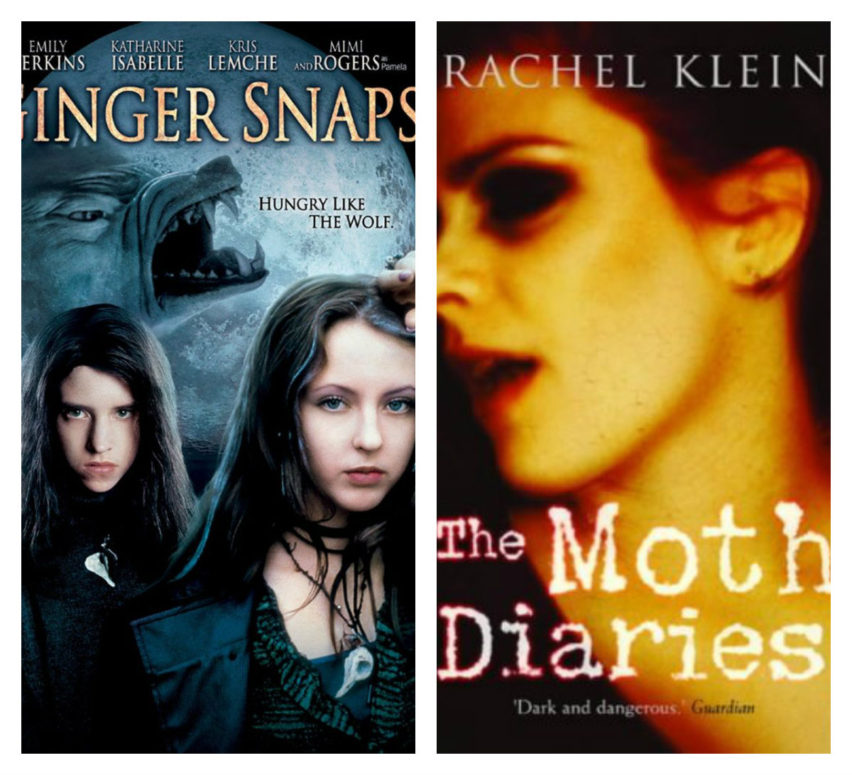 The Moth Diaries Book