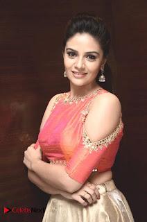 Television Anchor Sree Mukhi Pictures at Gentleman Success Meet  0004.jpg