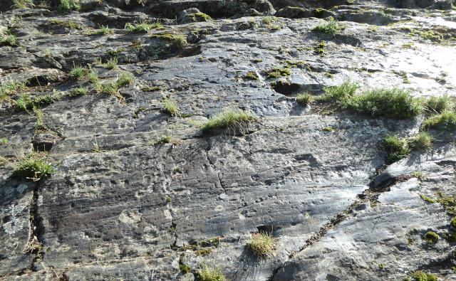 Roca amb estries