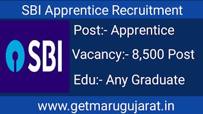 sbi recruitment, sbi apprentice recruitment