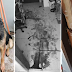 Magnanakaw, Nilapa ng German Shepherd sa Ninanakawang Bahay