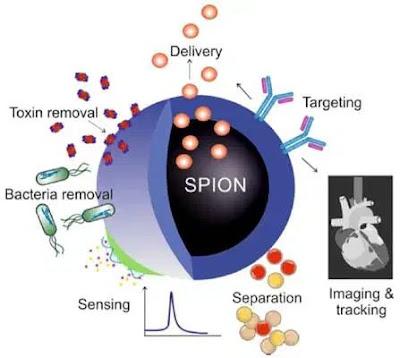 Nanoparticelle superparamagnetiche nei vaccini mRNA Covid