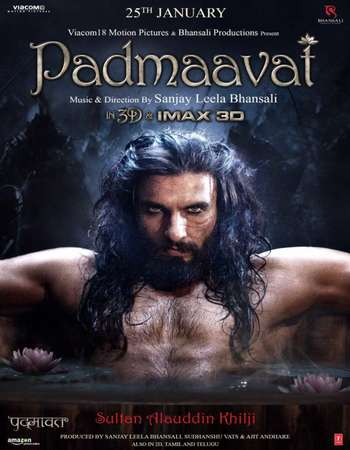 Padmaavat 2018 Hindi 230MB HDRip HEVC Mobile ESubs