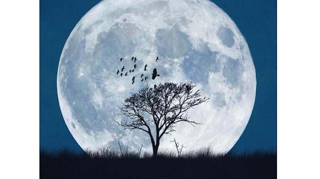 Tata Cara Salat Gerhana Bulan