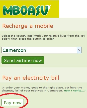 How to Pay ENEO Electricity Bills Online in Cameroon - RANSBIZ