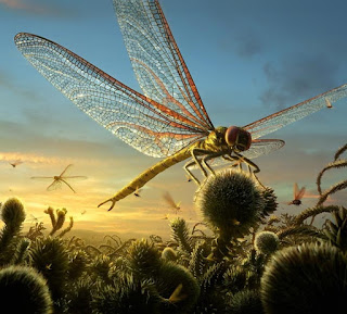 Meganeura - Insecto prehistórico