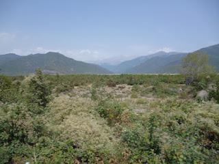 Camino de Seki