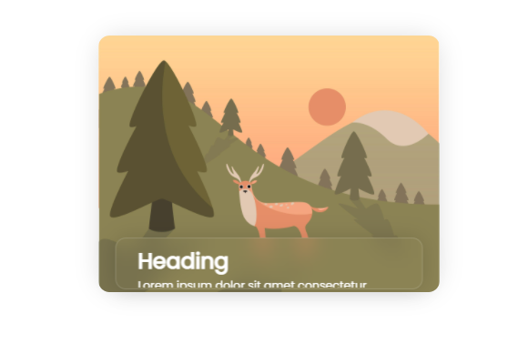 Card image Hover Effect | hover on image effect | more content on hover