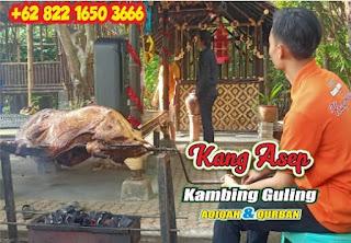 Kambing Guling Murah Cidadap Bandung, kambing guling murah cidadap, kambing guling cidadap bandung, kambing guling cidadap, kambing guling