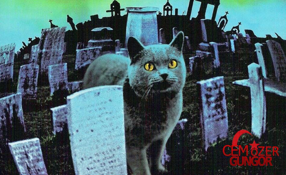 Hayvan Mezarlığı, Nisan 2019