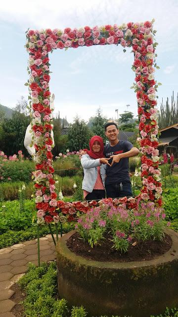 Segarnya Berwisata di Kebun Bunga BEGONIA