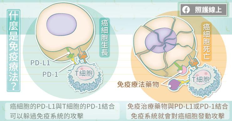 什麼是免疫療法