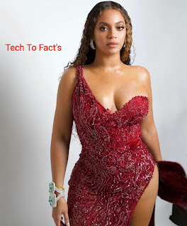 beyonce net worth beyonce twins