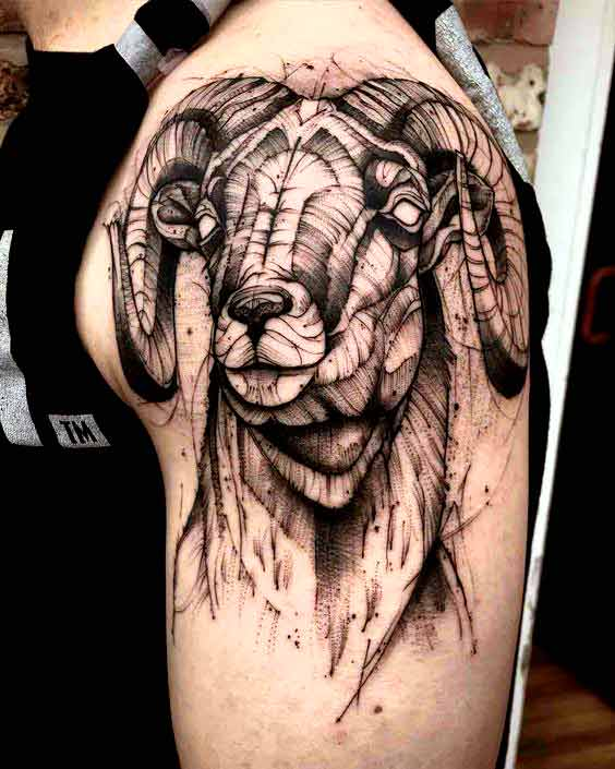 Sketch style aries tattoos designs for men and women
