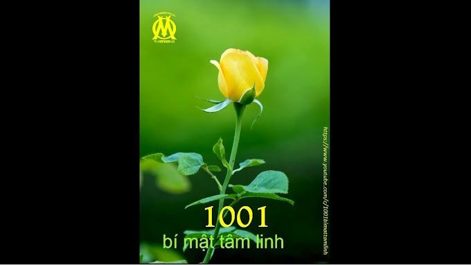 1001 Bí Mật Tâm Linh (0071) Chùm ý nghĩ là bản ngã, ngọn lửa ham muốn là linh hồn