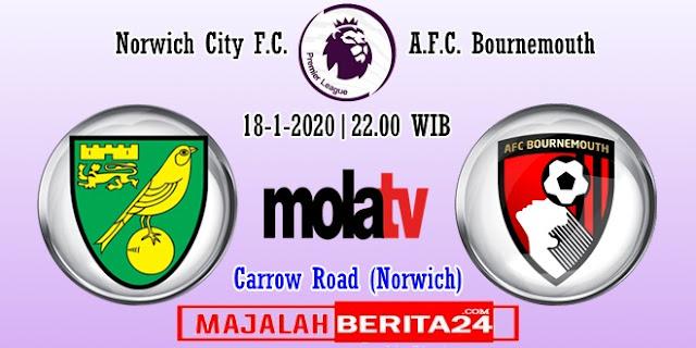 Prediksi Norwich City vs AFC Bournemouth — 18 Januari 2020