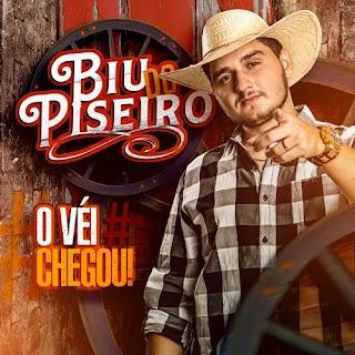 Download - Biu do Piseiro - O Som dos Paredões - Promocional de Março 2020