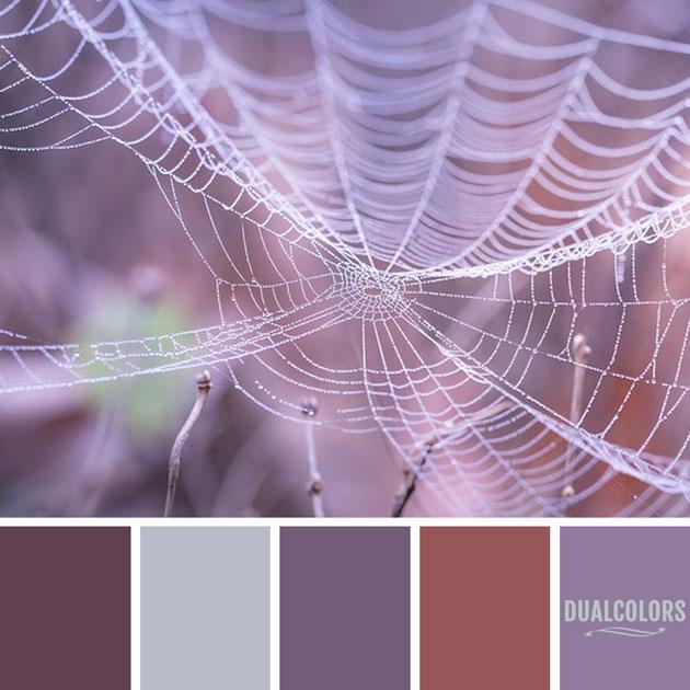 color_paleta_203